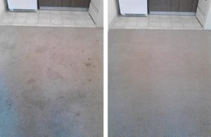 Albany, Corvallis, Philomath carpet cleaning before and after