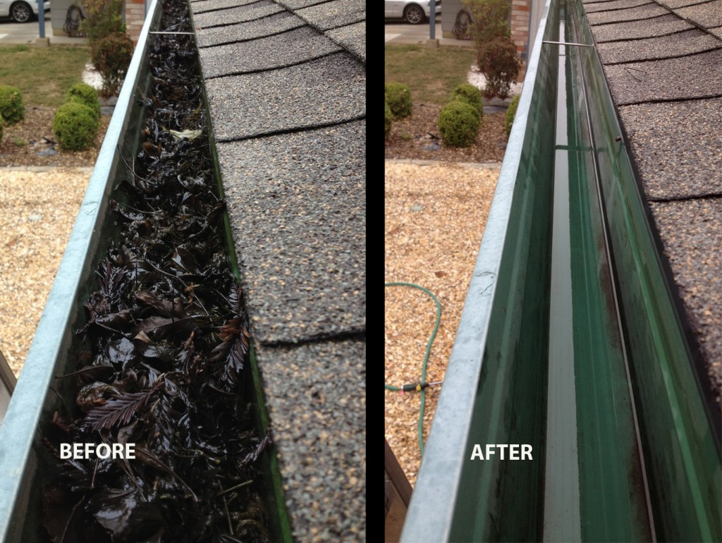 Corvalis Albany Philomath Gutter Cleaner Company Clearly